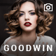 Photography & Video GoodWin WordPress Theme