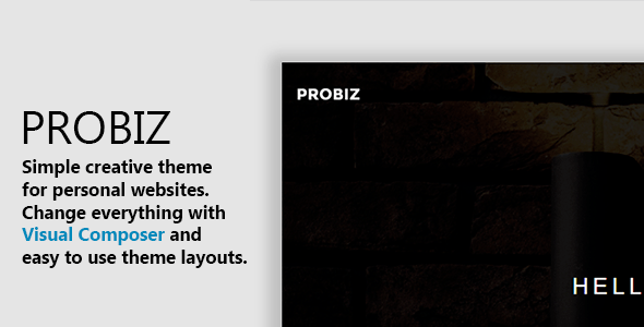 Probiz - Minimal WordPress Personal Portfolio Theme
