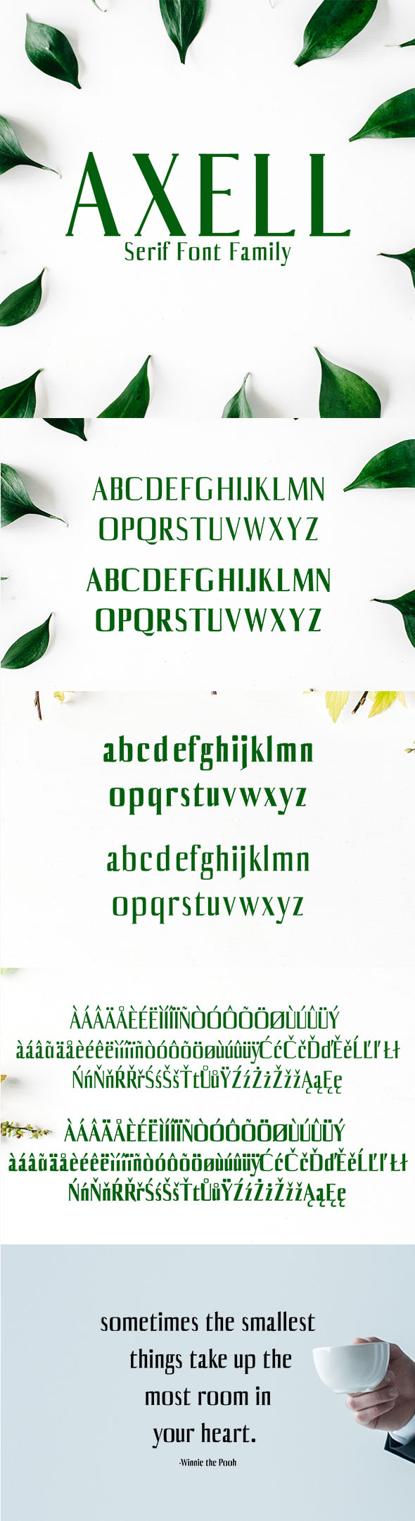Free Font Axell Serif Font Family Download