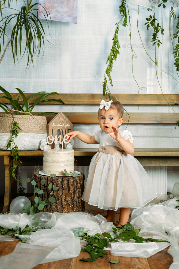 Eco Friendly Baby First Birthday Party With Cake 1st Birthday Ideas With Natural Decoration Stock Photo By Irynakhabliuk