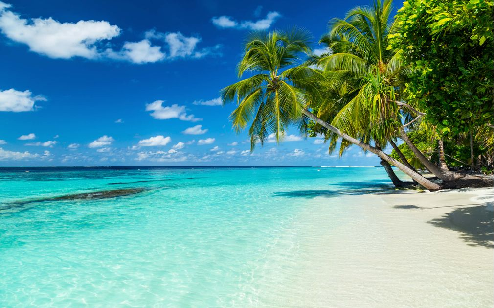 Image Result For Bali Vacation Lonely Planet