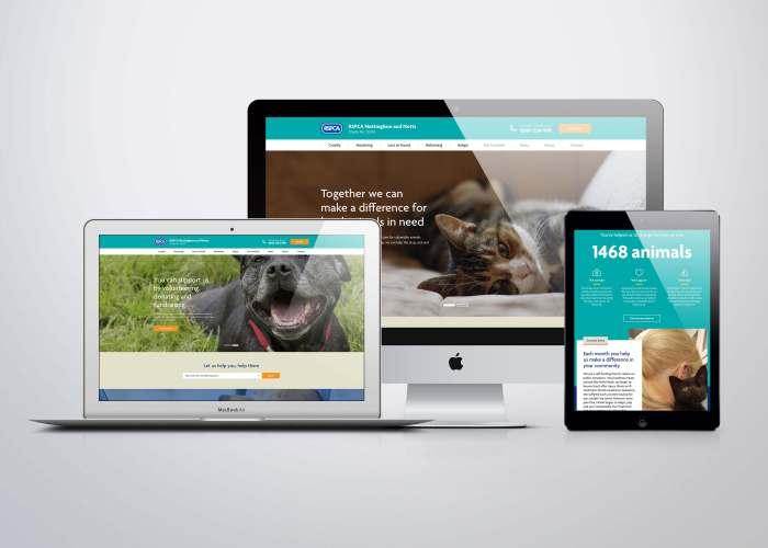 RSPCA New Website Design Fifteen
