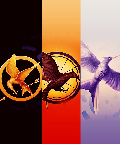 https://i2.wp.com/s3.favim.com/orig/42/catching-fire-mockingjay-the-hunger-games-Favim.com-357369.jpg
