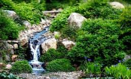 Half Off Quarryhill Botanical Garden Visit