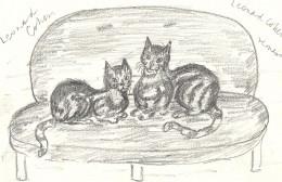 Cats after tea