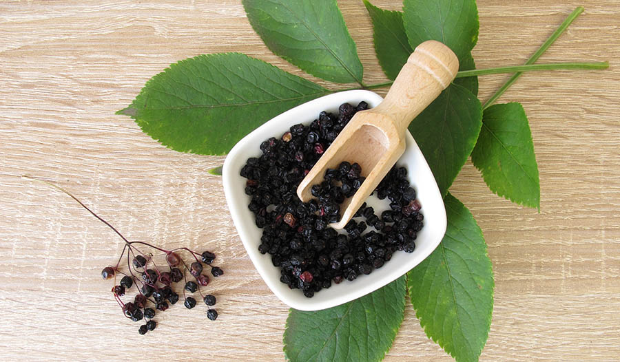 The Benefits Of Elderberry Blog Iherb