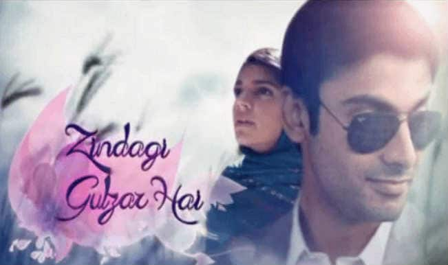 Image result for The Pakistani actor who is best known for the TV shows like 'Humsafar' and 'Zindagi Gulzar Hai'