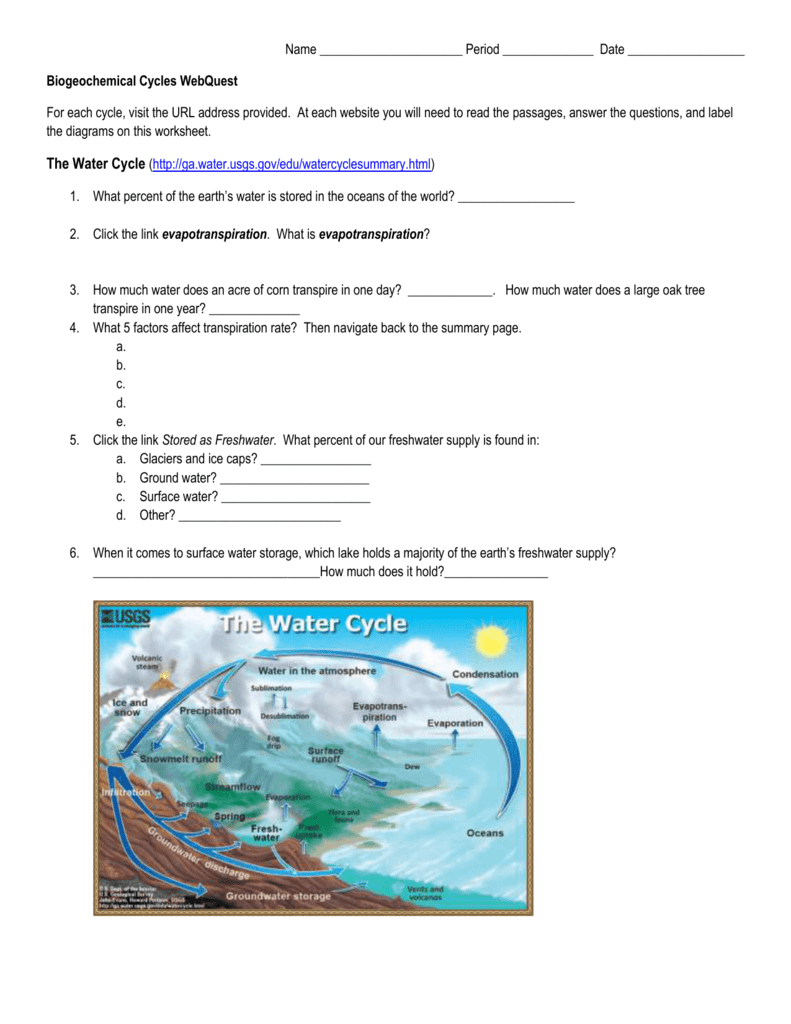 Biogeochemical Cycles Webquest