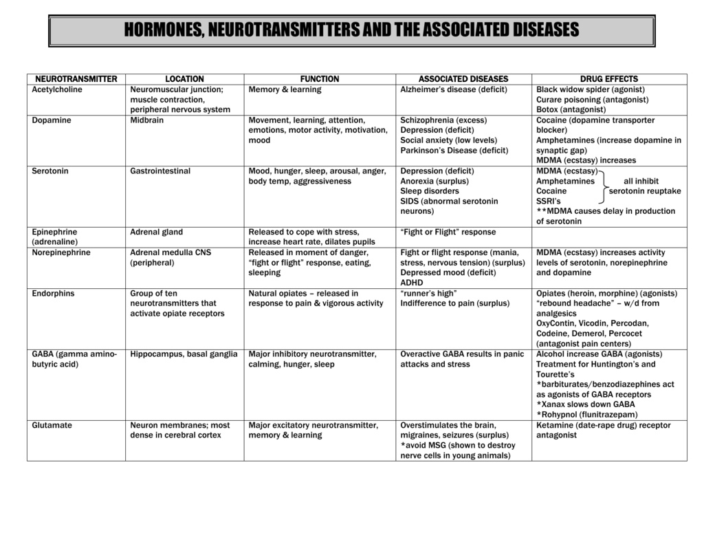 Worksheet Nervous System Disorders