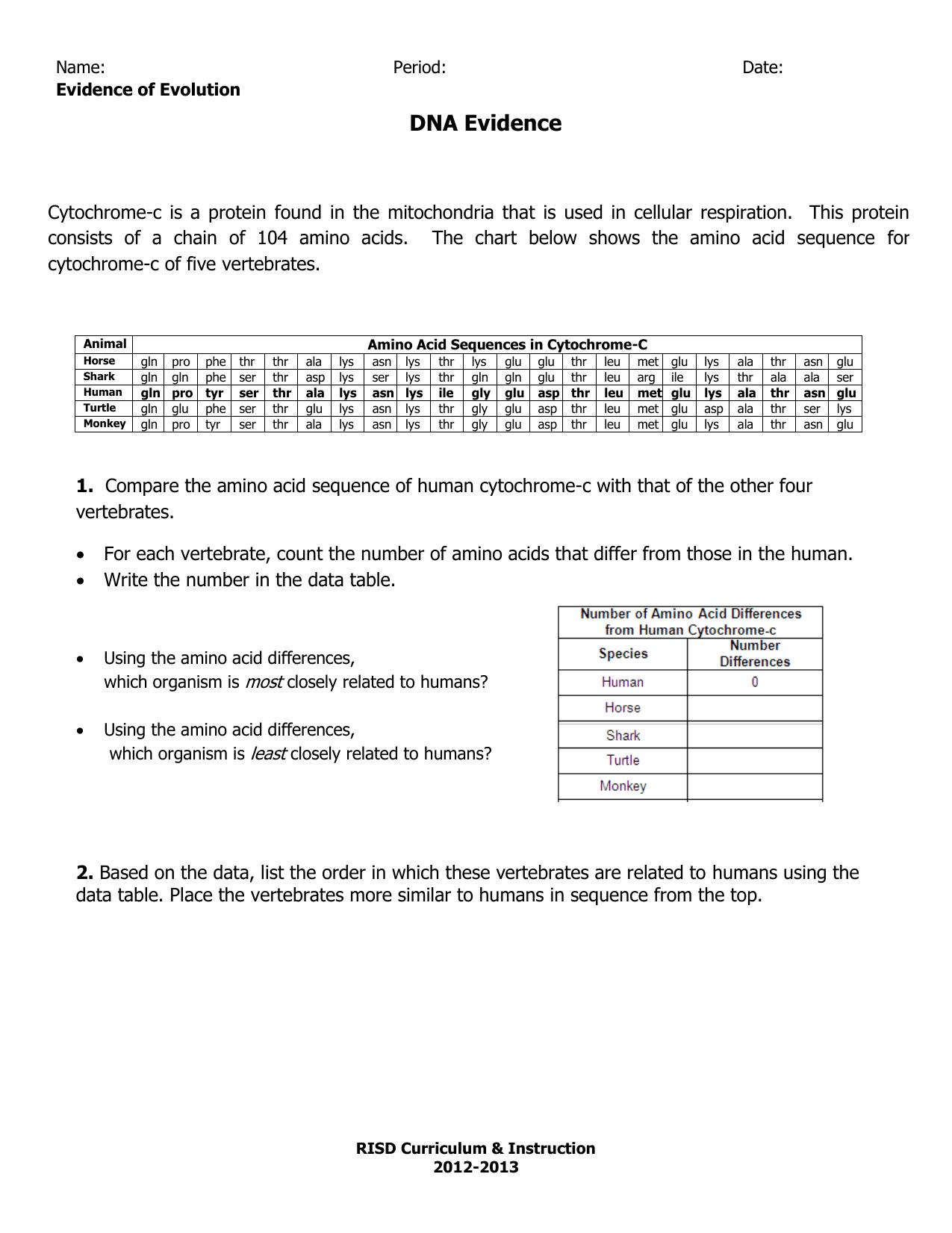 Cytochrome C Chart Worksheet