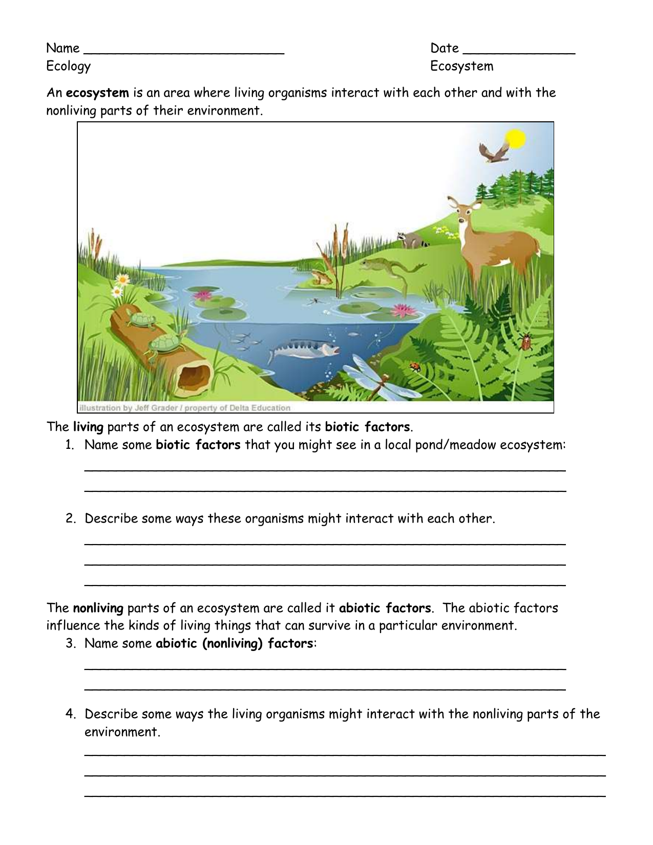 Ecology Student Worksheets