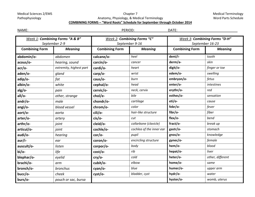 Word Parts Weekly Schedule S1