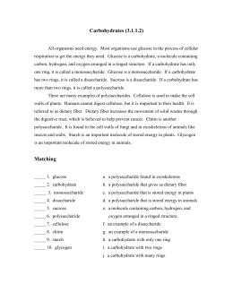 Macromolecules Worksheet 2
