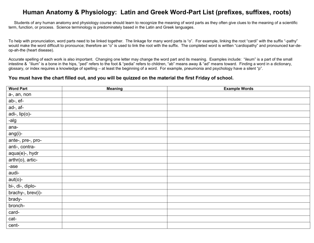 Human Anatomy Amp Physiology Latin And Greek Word