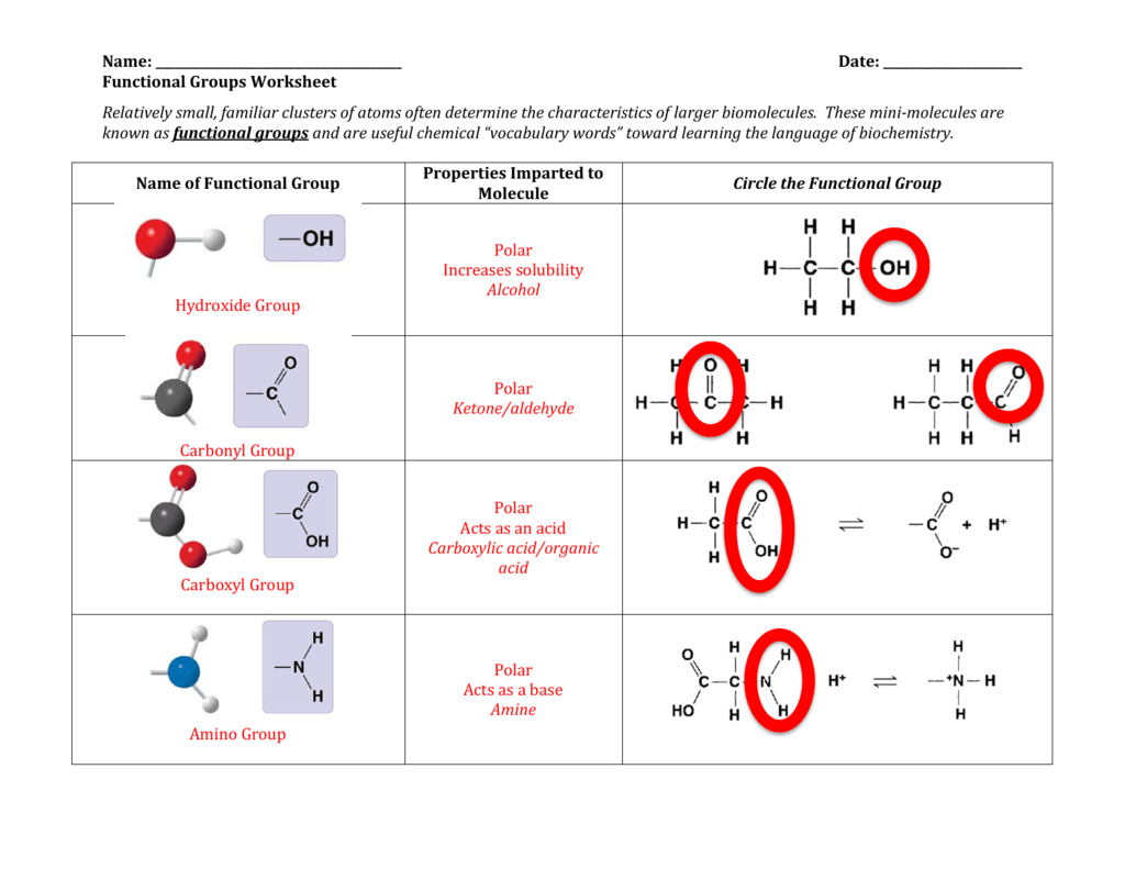 Functional Groups Worksheet