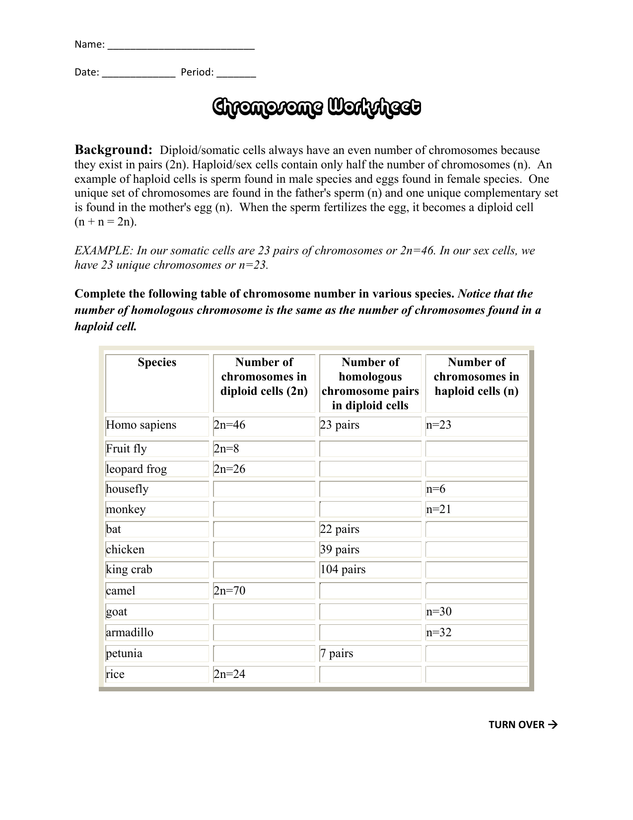 Chromosome Worksheet
