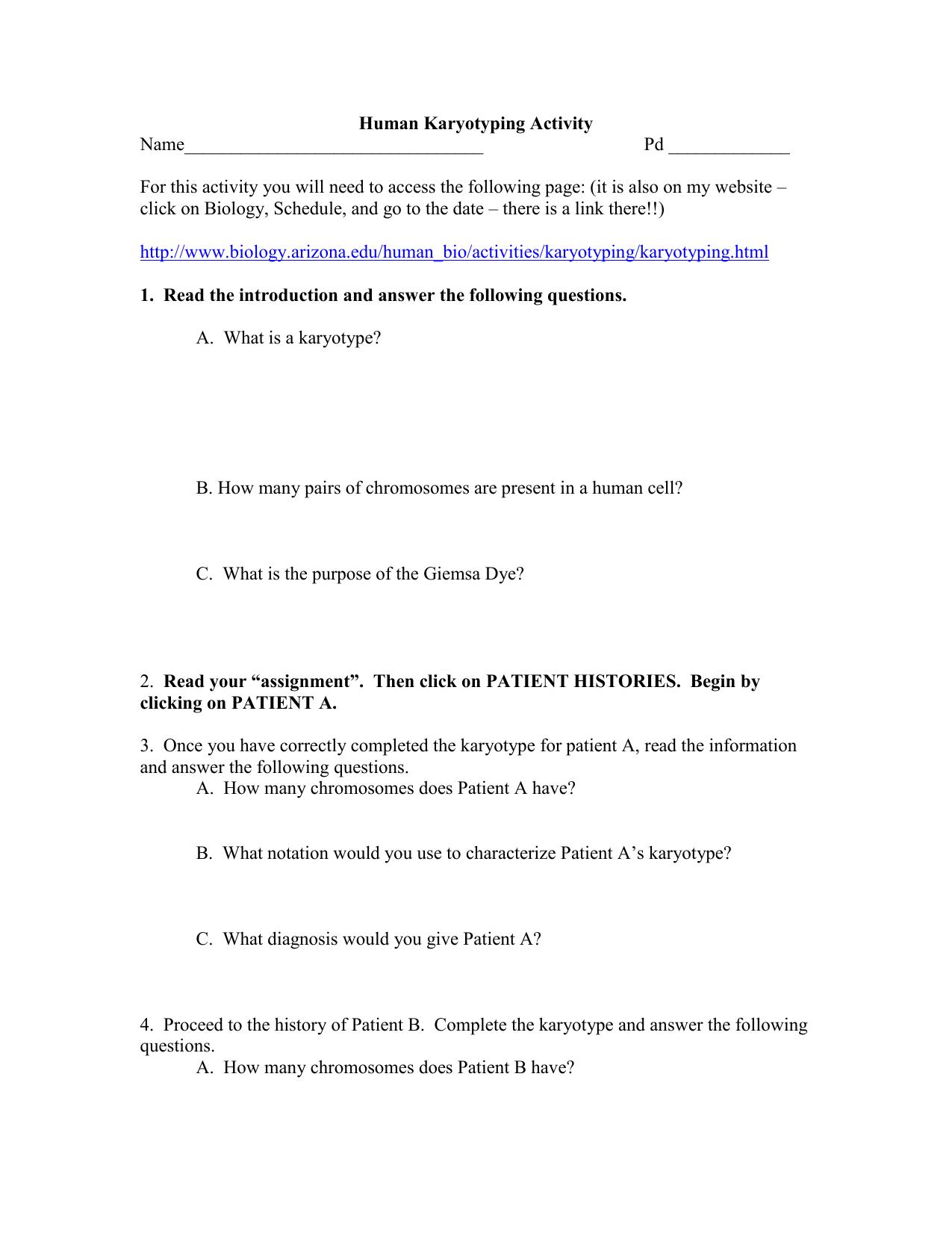 Biology Karyotype Worksheet Answers Key