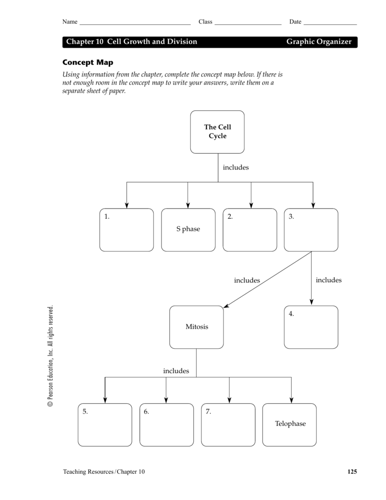 Key 2 Answer Reproduction Section Worksheet Review Cell