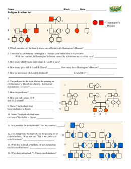 Pedigree Worksheet With Answer For Blog