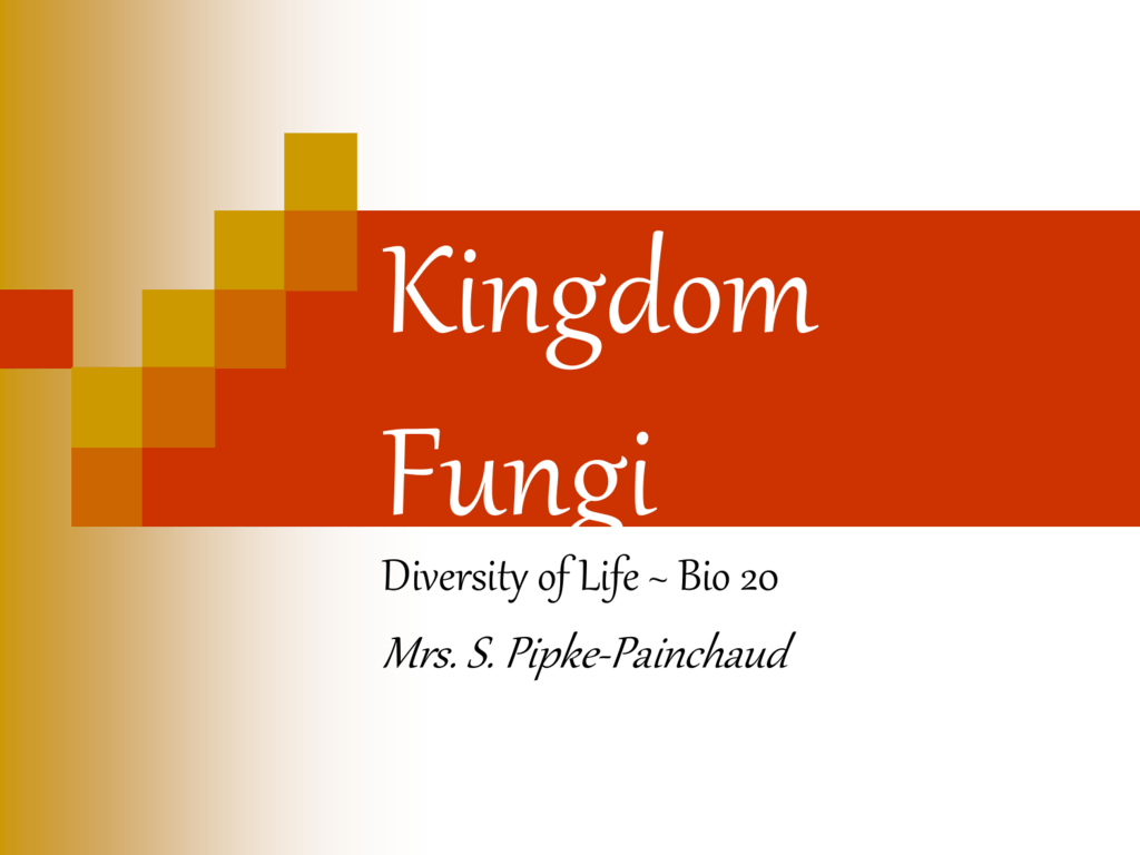Kingdom Fungi Student Worksheets