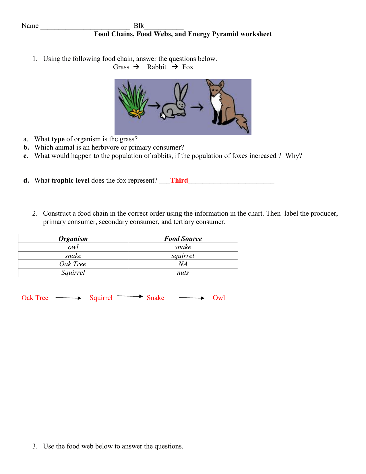 Food Chains Review Handout With Answers 1whl5v4