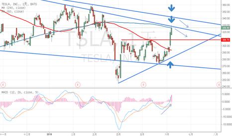 TSLA股票價格和圖表 — TradingView