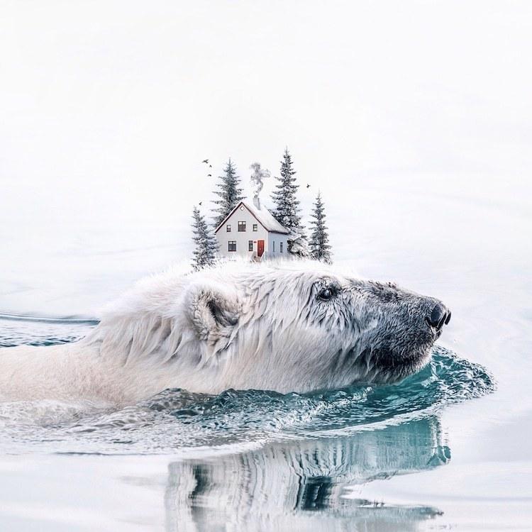 Художница вводит необычные элементы в чудесные сюрреалистические снимки природы