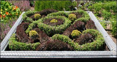 knot garden, Designing an Herb Garden, herb garden design, homesteading, homestead, gardening