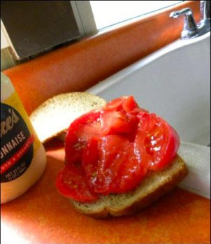 Tomato sandwich duke's mayonnaise, By embracing the Rutgers tomatoes and Brandywine tomatoes, we have, it seems, accidentally stumbled upon the best tomatoes to grow on the homestead, homesteading