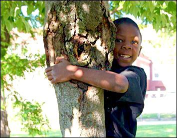 child hugging tree, raising kids in the country, country kids, raise country kids,keeping country kids safe around guns, kid friendly chickens, homesteading, homestead