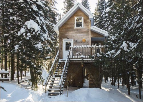 elevated-cabin-for-homestead-defense