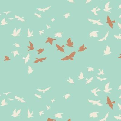 Aves Chatter Shine