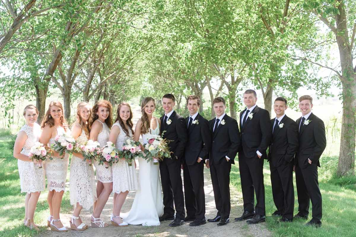 sugar grove bridal party photo