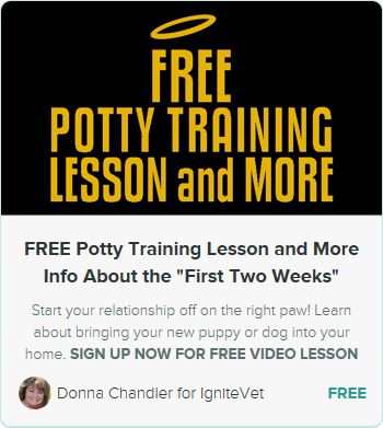 ENROLL NOW! CLICK FOR FREE POTTY TRAINING LESSON