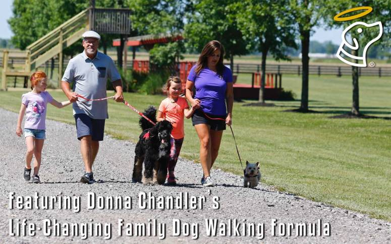 Featuring Donna Chandler's Life-Changing Family Dog Walking Formula