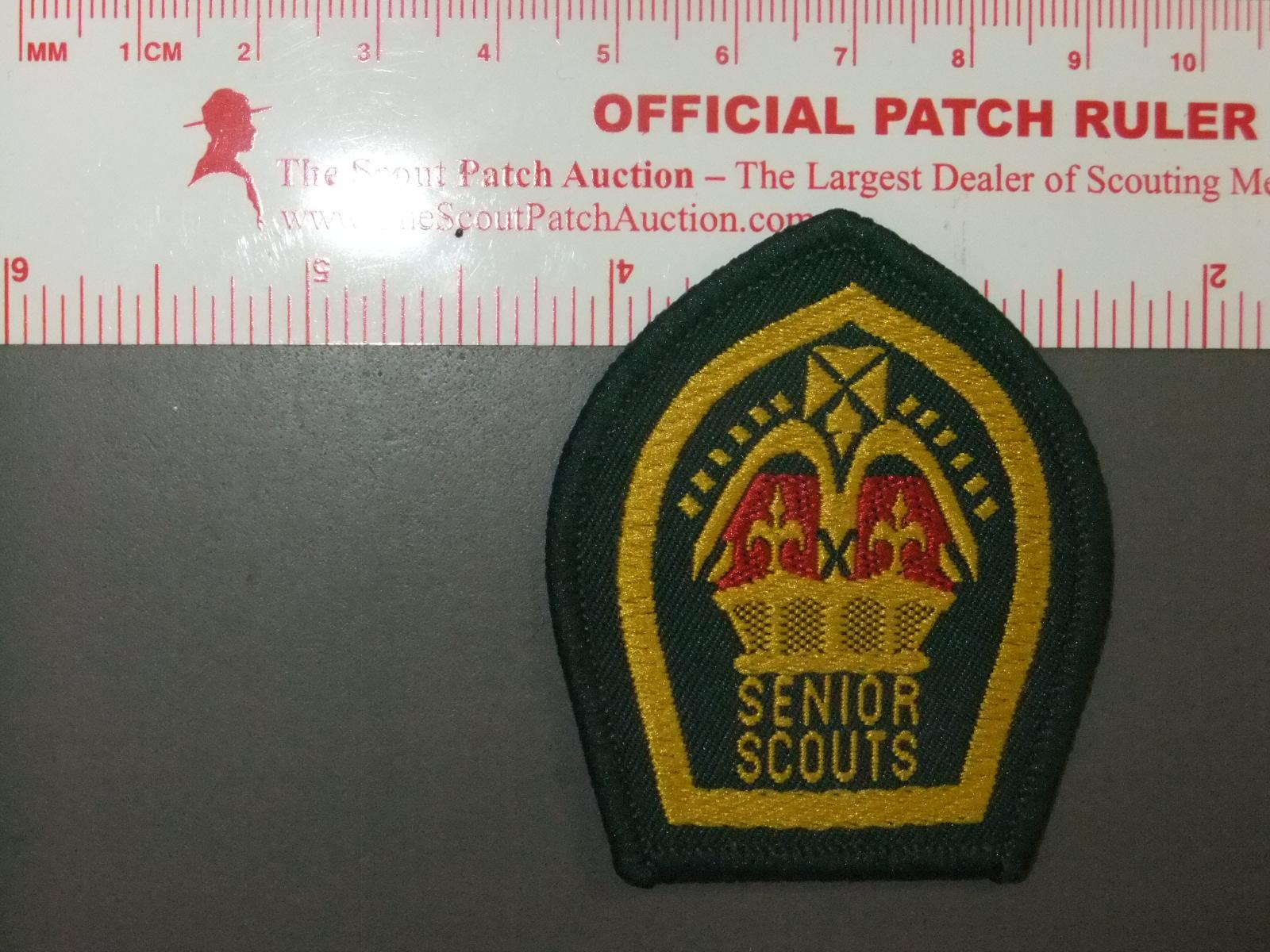 Boy Scout Vintage King Scout Queen Scout Badge Senior