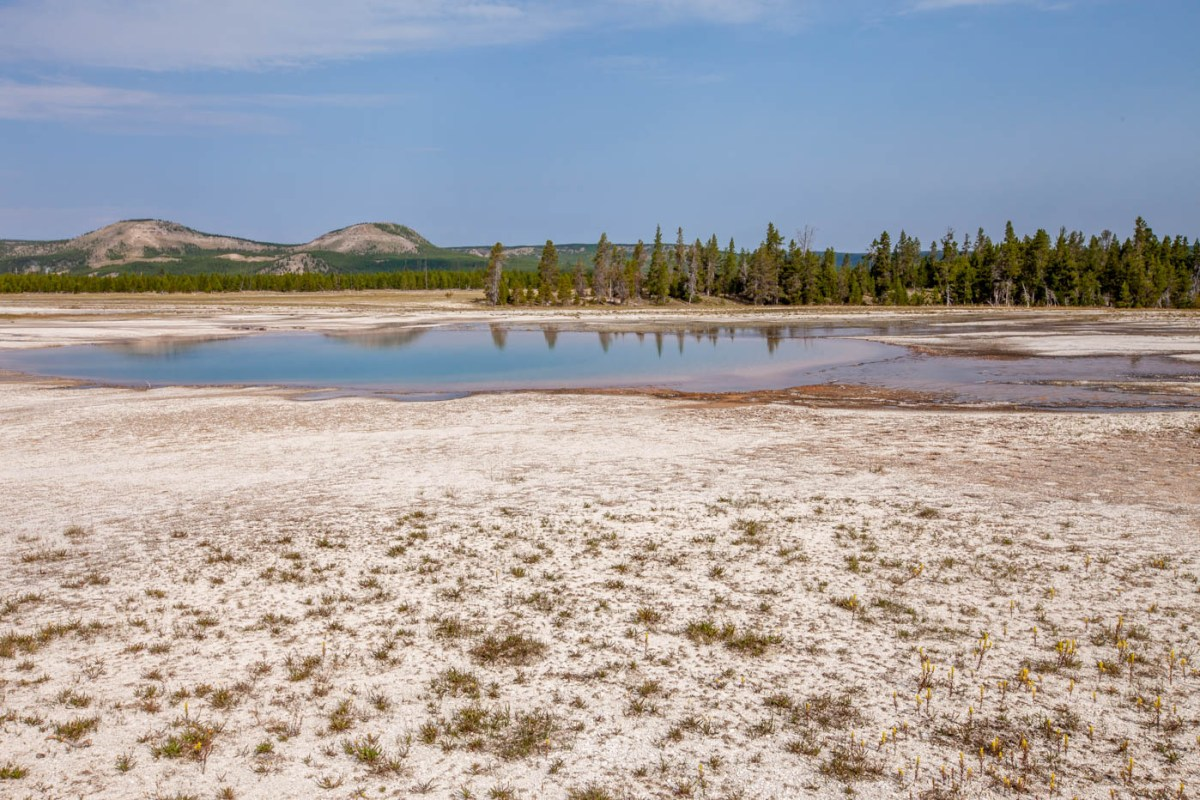 Turquoise pool on the hike to the Grand Prismatic Spring at Yellowstone National Park #vezzaniphotography