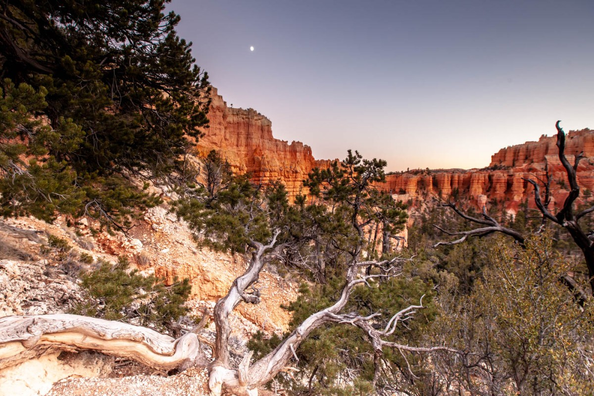 Sunset at Fairyland Canyon in Bryce Canyon National Park #vezzaniphotography