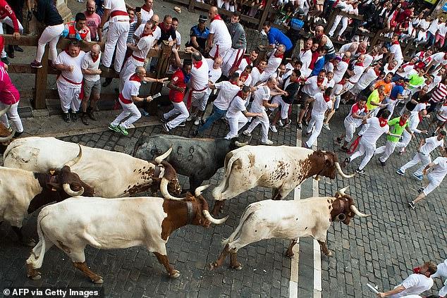 2019: Los participantes corren junto a los toros de lidia de Miura en el último encierro de las fiestas de San Fermín en Pamplona, norte de España.  El festival tuvo que cancelarse en 2020 debido a la pandemia de coronavirus, y un funcionario local ha dicho que probablemente también tendrá que cancelarse en 2021.