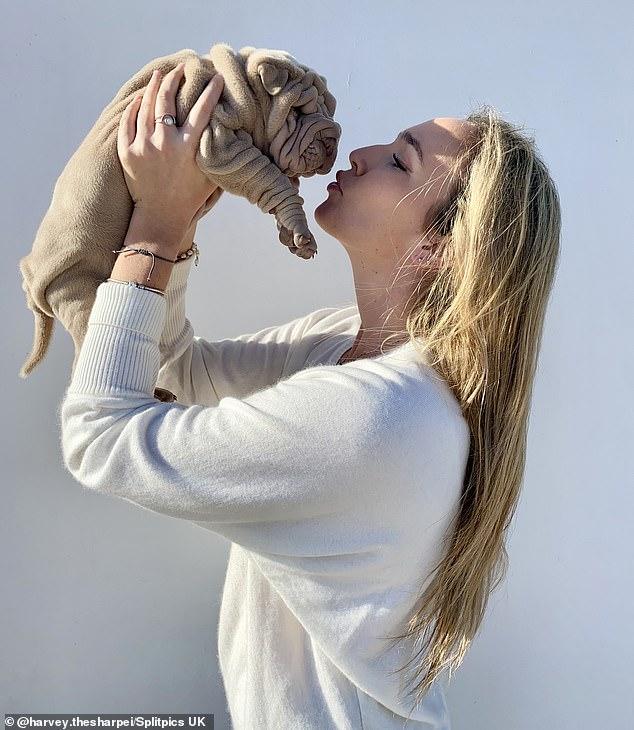 Teresa Moll Arguimbau, de 22 años, afirma que los pliegues únicos de Harvey lo hacen perfecto para abrazos (en la foto juntos)
