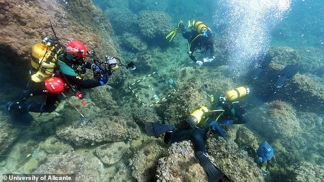 Los apneístas aficionados han encontrado una de las mayores reservas de monedas romanas de oro de Europa mientras estaban de vacaciones en las costas de España.
