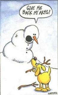 Winter_Humor_2013_03