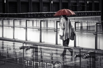 ©Brian Wood-Koiwa