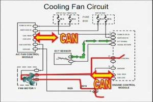 ElectricCoolingFanWiringDiagram | PopScreen