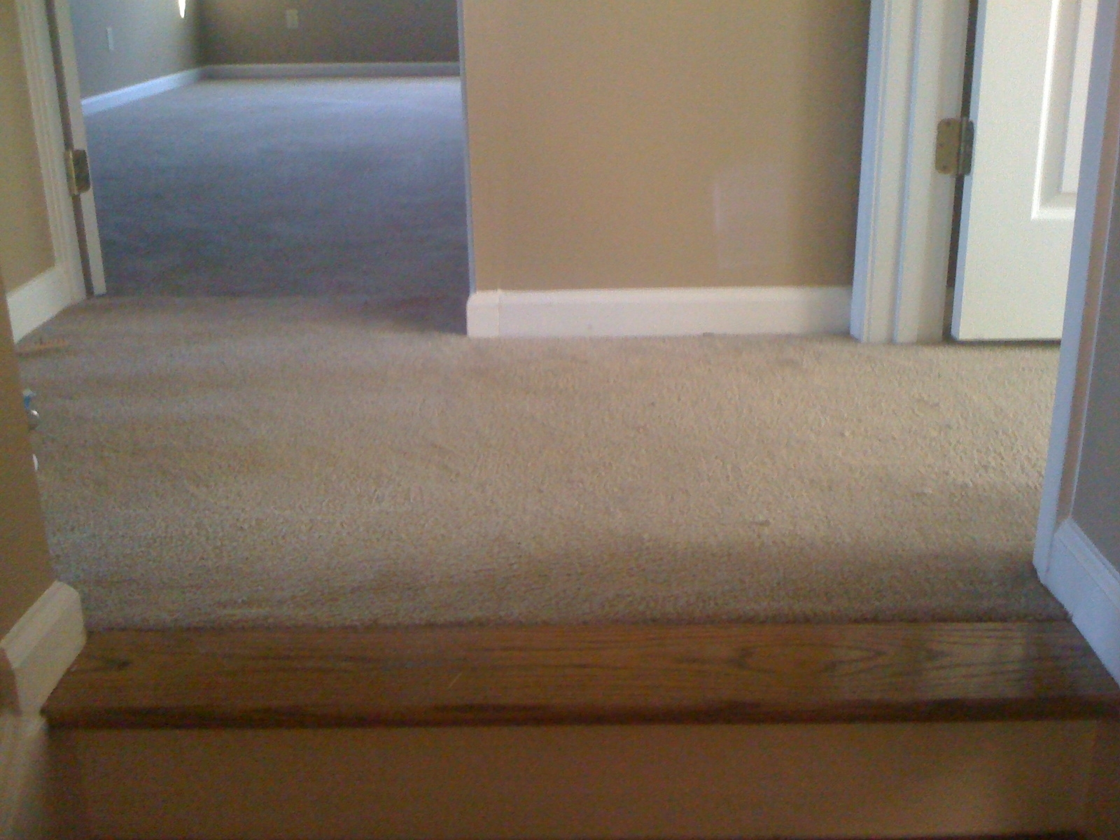 Transition Wood Floor To Carpet Stairs Wood Flooring | Carpeted Stairs To Wood Floor Transition | Laminate Flooring | Staircase | Hall Carpet Transition | Metal Edge Transition | Wooden