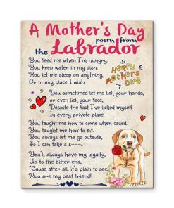 A Mother's Day Poem From Labrador Canvas