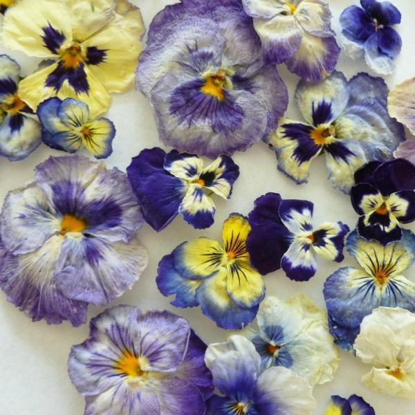 blue flower table decorations » 4K Pictures | 4K Pictures [Full HQ ...