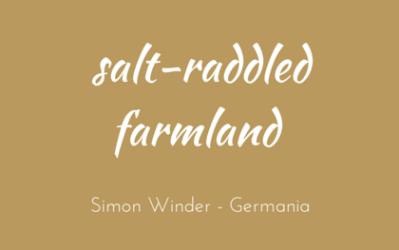 Salt-raddled farmland