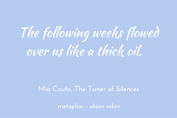 Mia Couto Tuner of Silences