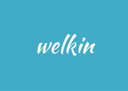 word - welkin - sky or heaven
